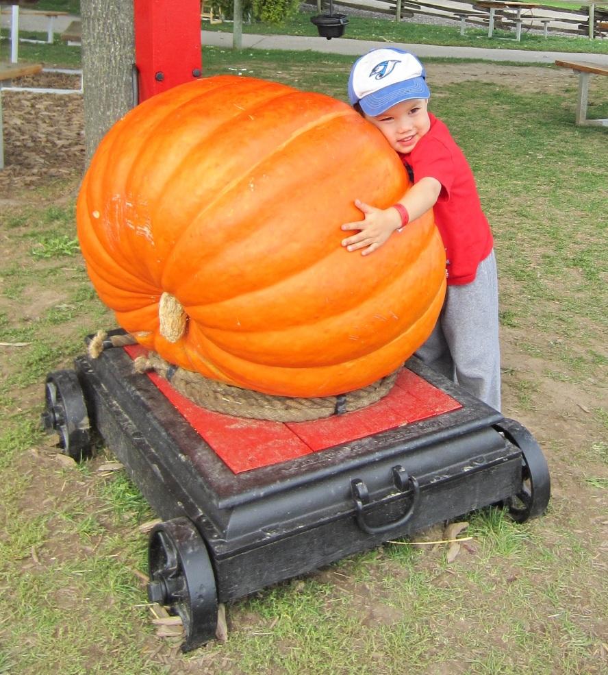 Best halloween pumpkin